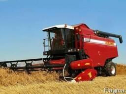 Надаємо послуги по збору урожаю,зернових та олійних культур