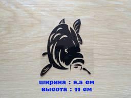 Наклейка на авто Карп Чёрная