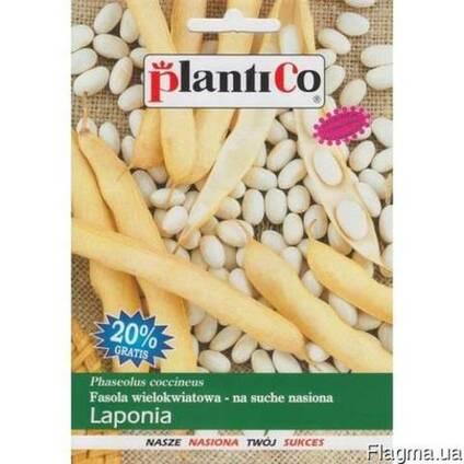 Насіння квасолі сорт Лапоніа