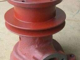 Насос водяной МТЗ Д-240. Помпа водяная МТЗ Д-240