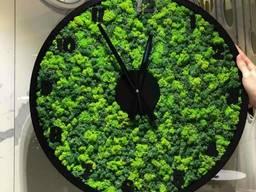 Настенные часы со стабилизированым мхом круглые MiNature Moss 60 см