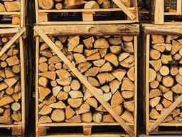 Немецкая фирма купит дрова