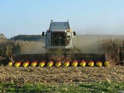 Нова жниварка для кукурудзи Ziegler CC12S