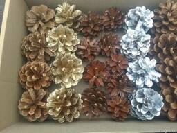 Новогодние сосновые шишки для украшений и декора