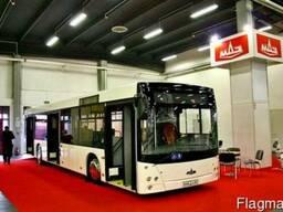 Новый городской автобус МАЗ-203069