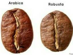 Новый кофе королевская арабика