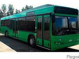 Новый пригородный автобус МАЗ 103564