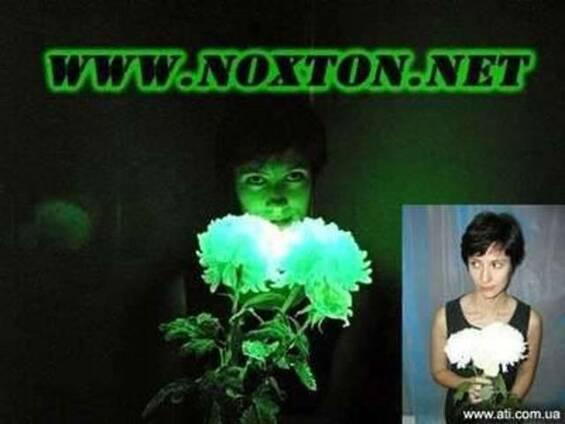Noxton Technologies - светящаяся в темноте краска и порошок