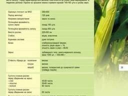 НС 400, кукуруза нс 400 купить, Посевной материал НС 400