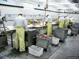 Оборудование для переработки мяса, птицы и рыбы