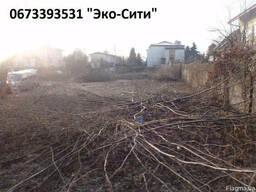 Обрезка старых деревьев Киев.