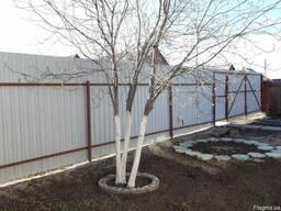 Обрезка яблонь. Киев - Область. Обрезка старых деревьев.
