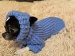 Одежда для животных - фото 4