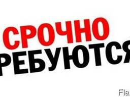 Официальное трудоустройство в Литве.
