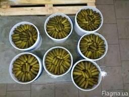 Огурцы солёные (квашеные)