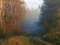 Охотничье хозяйство в Черниговской области