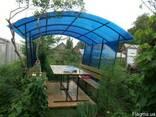 Теплицы, навесы, крыши, козырьки, парники из поликарбоната - фото 7