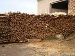Оптовая покупка древесины(преимущественно бука) - фото 2