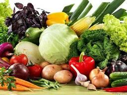 Оптово-розничная продажа продуктов питания