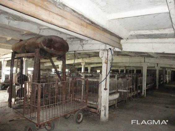 Оренда приміщення, свинокомплекса, ферми.