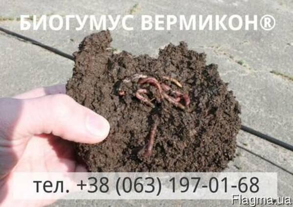 Органическое удобрение Биогумус Вермикон®