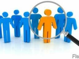 Организация подбора персонала в Ваш бизнес
