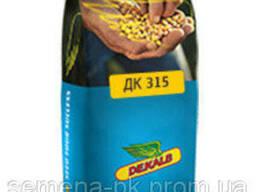 Оригінал Насіння кукурудзи ДКС 315 і ДКС 4408