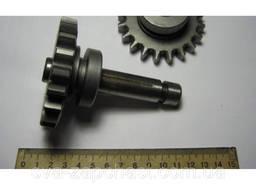 Ось шестерни привода компрессора ГАЗ МАЗ ПАЗ А29. 01. 301