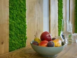 Отделка стен деревом. Планки, рейки, декор из дуба и ясеня.