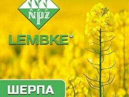 Озимый рапс НПЦ-Лембке F-1: Шерпа. . .