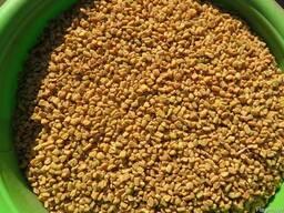 Пажитник (фенугрек) семена/молотый. Индия.