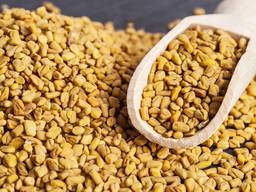 Пажитник сушеный семена (натуральный в/с) 1 кг