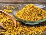 Пчелиная пыльца - фото 1