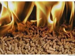 Пеллет топливный Летняя Цена