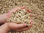 Пеллеты древесные в биг-бэг 1/т, пакетах по 15 кг. - фото 2