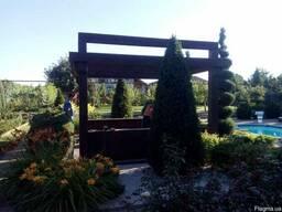 Пергола деревянная для загородного дома - фото 4