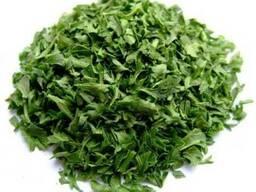 Петрушка , Сельдерей,пастернак корень,зелень сушеный