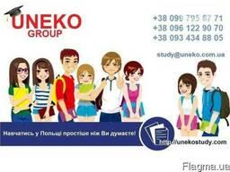 Підготовка до вступу в польські ВНЗ на безкоштовне навчання
