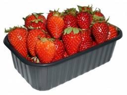 Пинетки судок лоток для ягод клубники малины черники овощей - фото 3