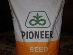 Піонер П9074 - насіння кукурудзи