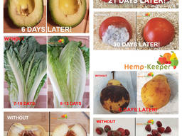 Пищевая подложка-естественный способ сохранить еду свежей