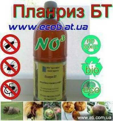 Планриз, азотфиксация, от вредителей, от болезней