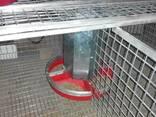 Пластиковая кормушка для кроликов или птицы - фото 1