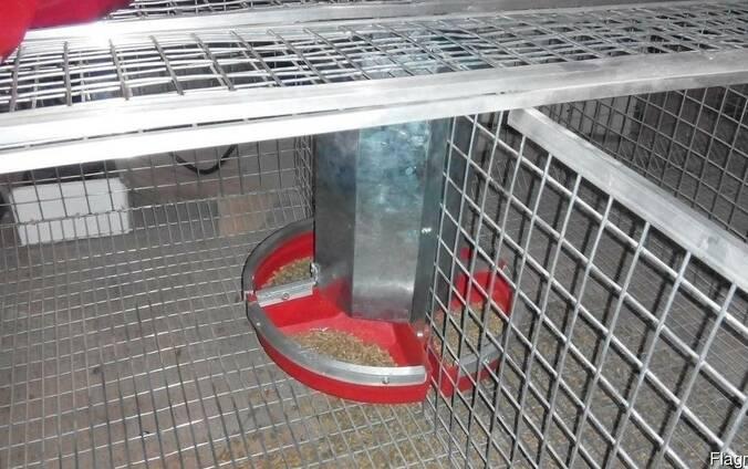 Пластиковая кормушка для кроликов или птицы