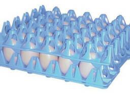 Пластиковые лотки для яиц (60-65 грамм)