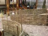 Плетень, Декоративный забор с Орешника(лещины)90грн м. кв. - фото 1