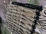 Плетень из орешника. (Украинский тин) - фото 4