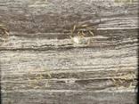 Плиты и слэбы из травертина сильвер - фото 2