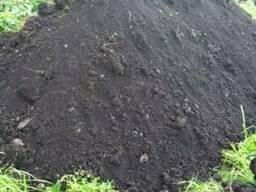 Почва плодородная