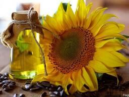 Подсолнечное нерафинированное масло / соняшникова олія